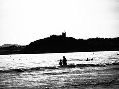 Criccieth castle (oneofmanybills) Tags: castle criccieth sea seaside coast wales bw black white grainy silhouette ducksinarow