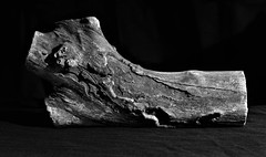 Wood Figure Reclining (The Photo Bard) Tags: wood art curves recline black white texture side light bw 18135 80d canon