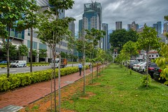 Green space in the city - Singapore, Central Business District (UweBKK (α 77 on )) Tags: green space tree grass city urban cbd central business district path walk building architecture grey cloud sky rain singapore southeast asia sony alpha 77 slt dslr
