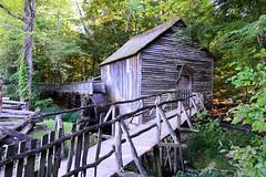 Great Smoky Mountains NP | DSC_0502 (Kaemattson) Tags: greatsmokymountainsnationalpark greatsmokymountains np mountains blueridgemountains appalachianmountain appalachiantrail trail hiking tennessee tn townsendtn cadescove waterwheel