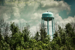 Standing (13skies) Tags: watertower cainesvilleon brantcounty tower water trees saturday clouds sky green contain photo 13skies high looking distance singleshothdr canont3i