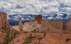 USA - Utah - Bryce Canyon (AlCapitol) Tags: usa us etatsunis utah nikon d810 brycecanyon hoodoos nationalpark snow