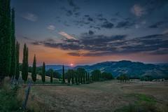 Toskana (markusgeisse) Tags: landschaft landscape sonnenuntergang sunrise toskana italien italy zypressen allee wiese hügel wolken clouds nature sony alpha national outside green tree hills sky sun light