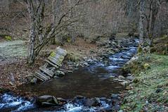 No cruces el río (SantiMB.Photos) Tags: 2blog 2tumblr 2ig valdetoran valldaran valdaran pirineos pyrenees lleida otoño autumn río river toran geo:lat=4281901875 geo:lon=080421300 geotagged santjoandetoran cataluna españa