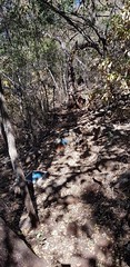 Hiking Trail (Rckr88) Tags: waterberggamepark limpopo southafrica waterberg game park south africa hiking trail hikingtrail hike walk walking trails tree trees mountain mountains nature outdoors travel