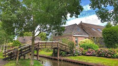 Giethoorn, Noordeinde, Overijssel, Netherlands - 2833 (HereIsTom) Tags: webshots travel europe netherlands holland dutch view nederland views you nature sun tourists cycle vakantie fietsvakantie cycling holiday bike bicycle fietsen plus apple ios camera iphone 8 green zuideinde canal 4 walking noordeinde middenbuurt giethoorn augustus water hous august garden toerists bridge walk flowers venetië plants 2019 weerribben de trees overijssel wieden 't klooster