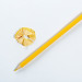 Sharpened yellow pencil on white background