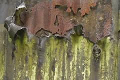 ThreePly (Tony Tooth) Tags: nikon d7100 nikkor 105mm iron corrugatediron rusty neglected abstract longsdon staffs staffordshire shibui wabisabi metal