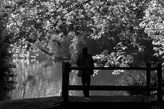 Looking out onto the lake ((Sue Lockhart Images)) Tags: silllhouette lake reflection bw monochrome blackandwhite figure bridge trees leaves ngysa