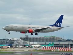 SAS B737 LN-RGD (Adrian.Kissane) Tags: 737 boeing airline airliner jet plane aircraft aeroplane aviation flying flight sky outdoors ireland airport 41258 1662019 b737 lnrgd dublinairport dublin sas
