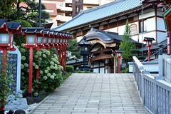The lanterns will show you the way (Abhay Parvate) Tags: lantern hojoji temple japanese 放生時 早稲田 waseda 東京 tokyo traditional architecture city cityscape