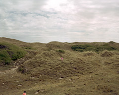Denneville, 2014 (BennehBoy) Tags: 000356 film 4x5 speedgraphic graflex dunes kid france normandy manche largeformat