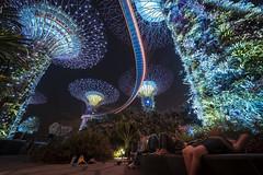Singapore - light forest (Rafael Zenon Wagner) Tags: laowa12mmf28zerod nikon d810 dream traum licht light urban show menschen people