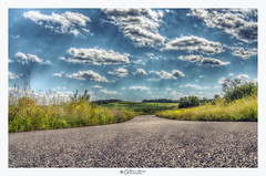 Summer Road Trip, Hollis, NH USA (Pearce Levrais Photography) Tags: sunshine sunny sunnyday sunbeams pavement fields outside outdoor landscape nature road flower field hill tree farm wildflowers sky cloud beautiful peaceful serene sony a7r3 hdr