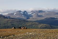 Padjelanta (timon.blub) Tags: sweden hiking padjelanta laponia lappland