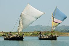 Sailing boats on the Lemyo River (or Lemro) in Rakhine State - Myanmar (PascalBo) Tags: nikon d70 burma birmanie myanmar asia asie southeastasia asiedusudest rakhinestate lemro lemyo river rivière boat bateau outdoor outdoors pascalboegli