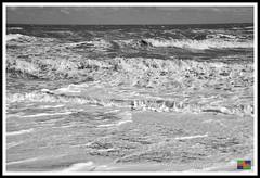 Mogg's Eye (14) (nowboy8) Tags: nikon nikond7200 anderbycreek cloudbar moggseye marshyard northsea cows beast wildsea