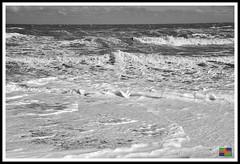 Mogg's Eye (12) (nowboy8) Tags: nikon nikond7200 anderbycreek cloudbar moggseye marshyard northsea cows beast wildsea