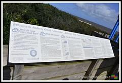 Anderby Creek Cloud Bar (12) (nowboy8) Tags: nikon nikond7200 anderbycreek cloudbar moggseye marshyard northsea cows beast wildsea