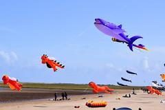 Festival of the Sky (Goolio60) Tags: beach kite kites festival cleethorpes coast