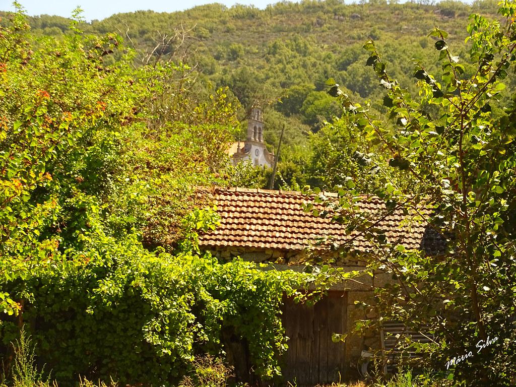 Águas Frias (Chaves) - ... armazém envolto em vegetação, com a Igreja Matriz, espreitado ao fundo ...