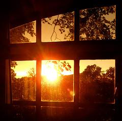 Golden sunset after a rainy day (EvelienNL) Tags: sunset sun sunlight sunshine sunny evening shadows silhouettes light yellow orange window framed flare zonsondergang zon zonlicht zonning zonneschijn avond schaduwen silhouet licht avondlicht geel oranje raam gloed