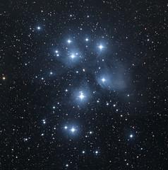Pleiades (Jim Wisinski) Tags: stars starphotography nightsky astrophotography astralphotography pleiades starcluster dso nikond750 telescope