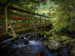 The Bridge (kckelleher11) Tags: 1240mm 2019 ireland olympus august bridge em1 mzuiko stream water wicklow