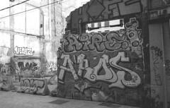 190906_VLC_022 (Stefano Sbaccanti) Tags: valencia spain spagna españa stefanosbaccanti minox35gl kentmere400 rondinax35e 2019 analogico analogue analogicait blackandwhite bianconero blancoynegro graffiti artecallejera