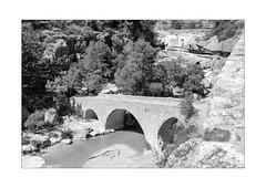 le pont dans la gorge (Armin Fuchs) Tags: arminfuchs nomansland france provence bridge dangerous anonymousvisitor thomaslistl wolfiwolf jazzinbaggies trees gorge canyon water river niftyfifty nature