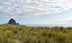 The Haystack Rock - Cannon Beach (SonjaPetersonPh♡tography) Tags: cannonbeach oregon oregoncoast northcoast nikon nikond5300 afsdxnikkor18300mmf3563gedvr haystackrock monolith haystacks thehaystackrock ocean oceanside pacificocean beach waves tide sand clouds shoreline shore nature plants pnw pacificnorthwest rock haystack
