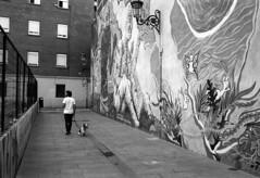 190906_VLC_014 (Stefano Sbaccanti) Tags: valencia spain spagna españa stefanosbaccanti minox35gl kentmere400 rondinax35e 2019 analogico analogue analogicait blackandwhite bianconero blancoynegro graffiti artecallejera