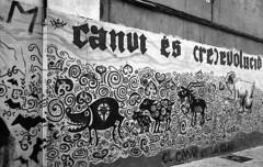 190906_VLC_003 (Stefano Sbaccanti) Tags: valencia spain spagna españa stefanosbaccanti minox35gl kentmere400 rondinax35e 2019 analogico analogue analogicait blackandwhite bianconero blancoynegro graffiti artecallejera