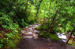 Stairway to Heaven (markburkhardt) Tags:
