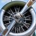 U.S. ARMY BT-13A Engine Closeup