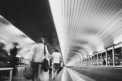 Dans un tube (LUMEN SCRIPT) Tags: metro monochrome perspective street photography paris france lines curves people streetphotography urbanlife