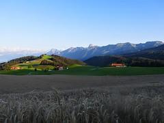 Gibelegg Riggisberg (Martinus VI) Tags: gibelegg riggisberg kanton canton de bern berne berna berner bernese schweiz suisse suiza switzerland svizzera swiss sommerabend