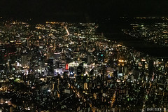Airplane window from SDJ to ITM 2019.8.25 (3) (double-h) Tags: d5 afsnikkor1635mmf4gedvr airplanewindow airplaneview airview windowseat jal jl2214 airplane travel nightscape cityscpae osaka umeda osakacastle castle osakajo yodogawa yodoriver yogogawariver river 大阪 梅田 大阪城 淀川 夜景 機窓 飛行機 旅