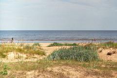 Jurmala beach (0kanakov) Tags: analog analogfoto analogphoto filmnotdead film35mm filmcamera 135 fed2 industar61 fujicolor c200 film 35mm landscape sea beach latvia jurmala sand seascape nature