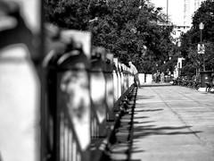 On the Promenade (George Stastny. Photographer.) Tags: street streetphotography streets olympus getolympus olympuspen edmonton alberta canada monochrome blackandwhite bnw bw