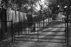 Gate to Farm Road (Gene Ellison) Tags: gate fence wood steel dirtroad farm road rural suburban evening blackwhitephotos bw fujifilm acros sooc