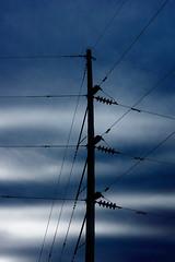 Power Pole (Dave Linscheid) Tags: electricity lines summer smartphotoeditor sky clouds butterfield watonwancounty mn minnesota usa silhouette