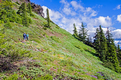 Iron Mountain (Tom Fenske Photography) Tags: wildflowers ironmt mountain hiking couple landscape wilderness oregon flowers summer people trees clouds nature scenic oregonexplored thatoregonlife