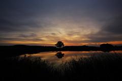 IMG_8439 (geraldtourniaire) Tags: eos6d ef 1740l natur nature franken mittelfranken 6d sonnenaufgang landschaft licht l