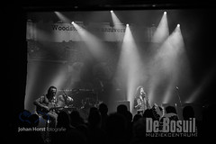JH 20190907 Bosuil - Woodstock LegendsODA_3008WEB