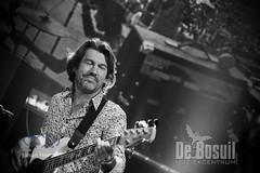 JH 20190907 Bosuil - Woodstock LegendsODA_2958WEB
