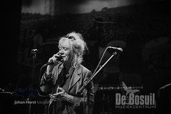 JH 20190907 Bosuil - Woodstock LegendsODA_2862WEB