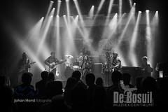JH 20190907 Bosuil - Woodstock LegendsDSC_8724WEB