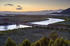 Picnic at the wildlife refuge (PeterThoeny) Tags: fremont california sanfranciscobay sanfranciscobayarea day dusk sunset bay water tree canal bridge outdoor donedwardssanfranciscobaynationalwildliferefuge donedwardsnationalwildliferefuge donedwards wildliferefuge sony a7 a7ii a7mii alpha7mii ilce7m2 fullframe vintagelens dreamlens canon50mmf095 canon 3xp raw hdr qualityhdr qualityhdrphotography fav100