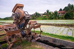 DSC_3362 (Sebastien J Bernard) Tags: jatiluwih rice terraces